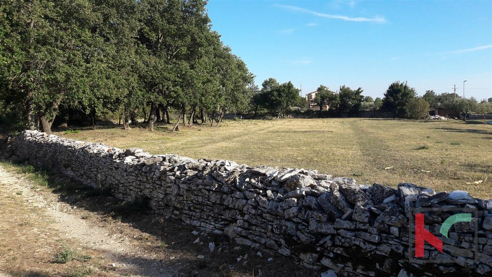 Rovinj, Kanfanar, Baugrundstück, 866m2-910m2