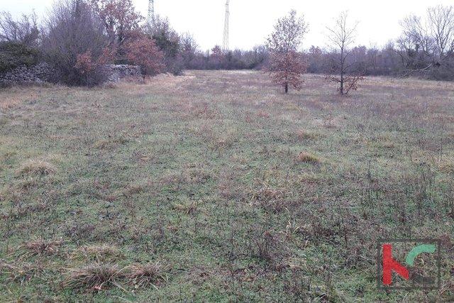Savičenta, Smoljanci, Baugrundstück 4200m2
